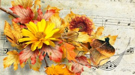 Music Of Autumn Picture Download