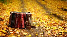 Music Of Autumn Wallpaper 1080p