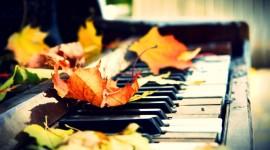 Music Of Autumn Wallpaper