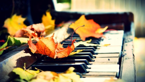 Music Of Autumn wallpapers high quality