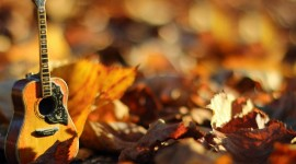 Music Of Autumn Wallpaper For Android