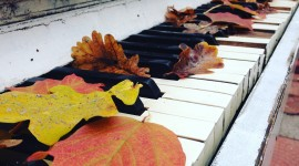 Music Of Autumn Wallpaper For IPhone