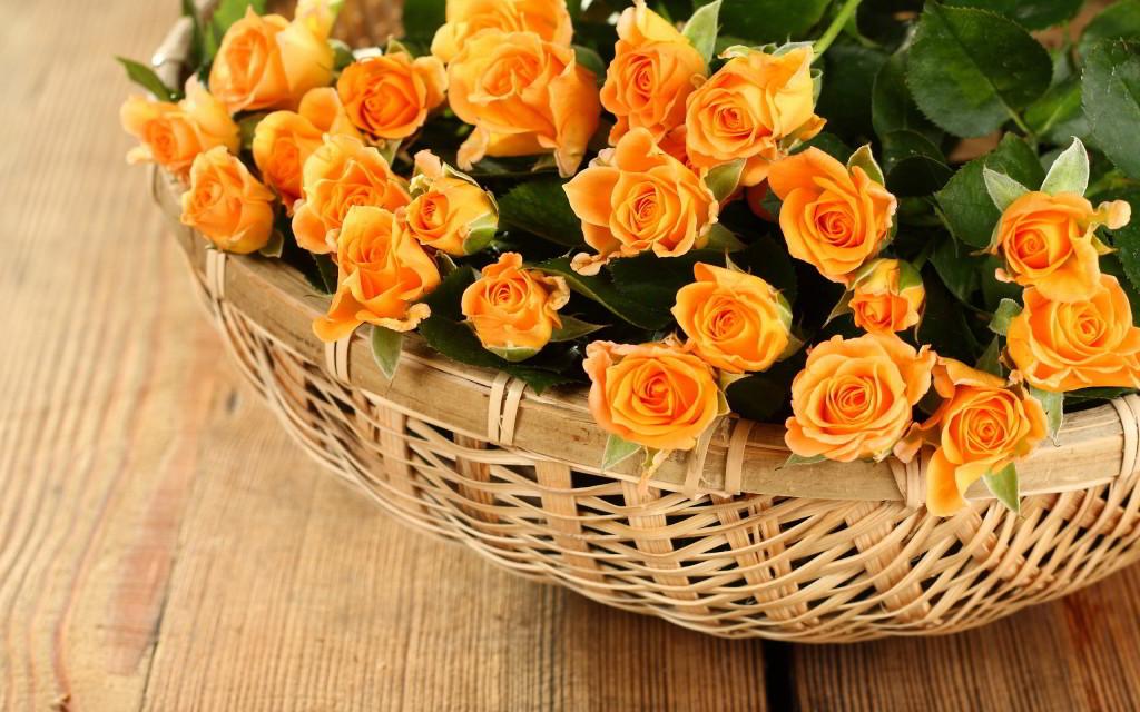 Roses In Basket wallpapers HD