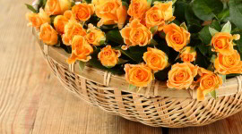 Roses In Basket Best Wallpaper