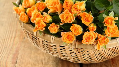 Roses In Basket wallpapers high quality