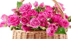 Roses In Basket Desktop Wallpaper