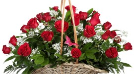 Roses In Basket Desktop Wallpaper For PC