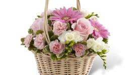 Roses In Basket Image Download