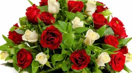 Roses In Basket Photo Free