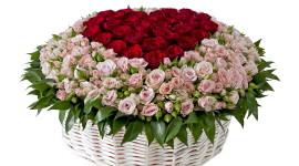 Roses In Basket Wallpaper For Desktop