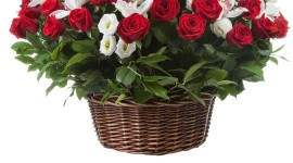 Roses In Basket Wallpaper For IPhone