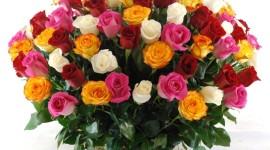 Roses In Basket Wallpaper Free