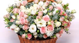Roses In Basket Wallpaper Full HD
