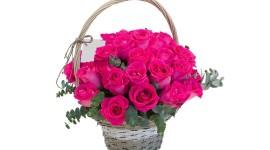 Roses In Basket Wallpaper Gallery