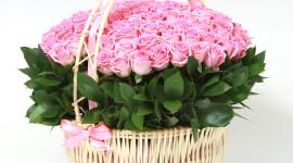 Roses In Basket Wallpaper HQ