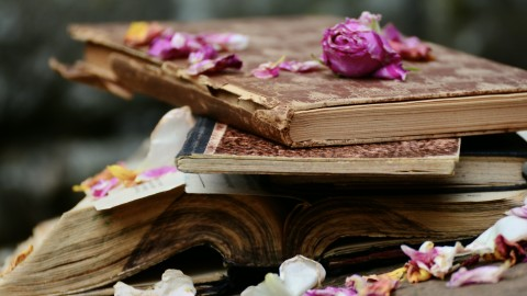 The Book Petals wallpapers high quality