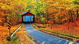 4K Autumn Bridge Wallpaper For Desktop