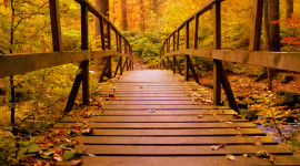 4K Autumn Bridge Wallpaper Gallery