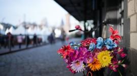 4K Street Flowers Photo Free
