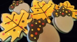 Autumn Cookies Aircraft Picture