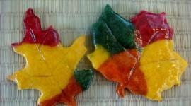 Autumn Cookies Photo Free