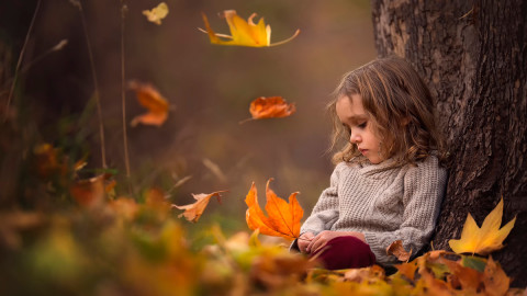 Autumn Sadness wallpapers high quality