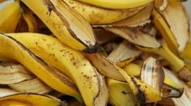 Banana Peel Best Wallpaper
