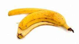 Banana Peel Wallpaper High Definition