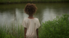 Beasts Of The Southern Wild For PC