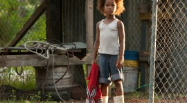 Beasts Of The Southern Wild Picture