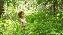 Beasts Of The Southern Wild Wallpaper Free