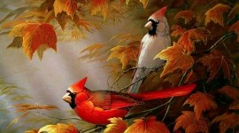 Birds In The Fall Wallpaper For Desktop
