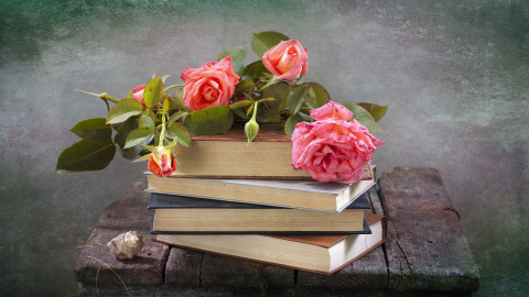 Book Flowers wallpapers high quality
