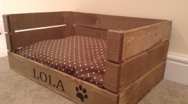 Dog Bed Wallpaper Download