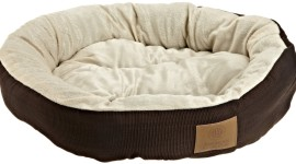 Dog Bed Wallpaper Free