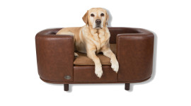 Dog Bed Wallpaper Gallery