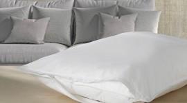 Feather Pillow Desktop Wallpaper