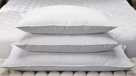 Feather Pillow Desktop Wallpaper Free
