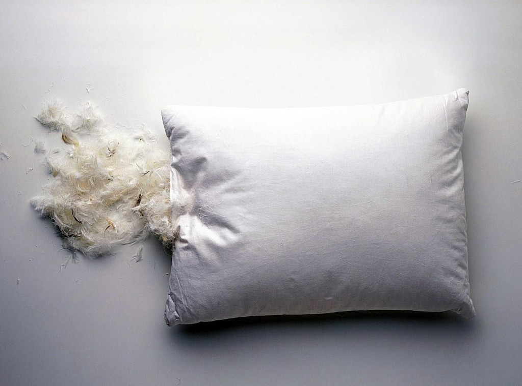 Feather Pillow wallpapers HD