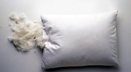 Feather Pillow Wallpaper