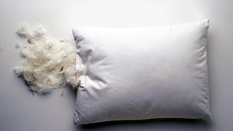Feather Pillow wallpapers high quality