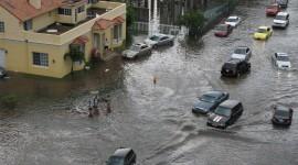 Flood Wallpaper HQ