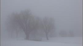 Fog In The City Desktop Wallpaper HD