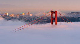 Fog In The City Wallpaper Download Free