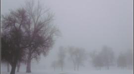 Fog In The City Wallpaper HD