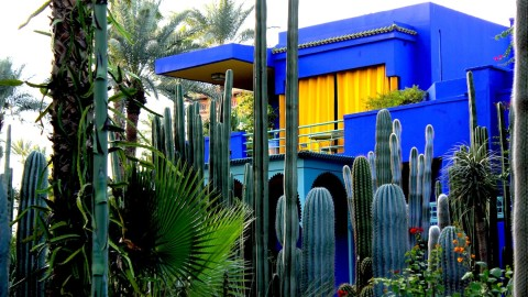 Majorelle Garden wallpapers high quality