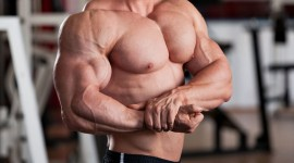 Man Biceps Photo