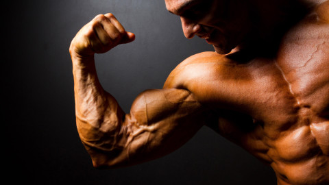 Man Biceps wallpapers high quality