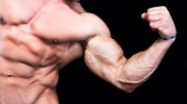 Man Biceps Wallpaper Download
