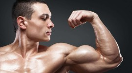 Man Biceps Wallpaper Gallery